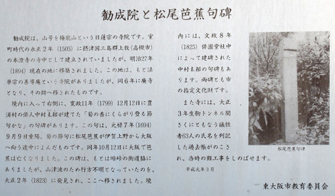 20130224hike_78w