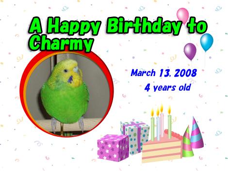Charmy_birthday_2008_1