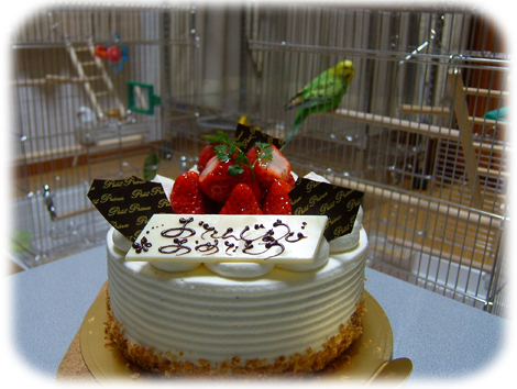 Charmy_birthday_2008_3
