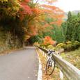 京北町から八木町へ細野川沿いの道を進む