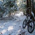 雪の西山古道