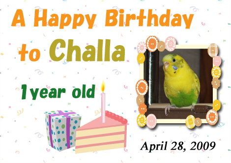 090428challa_birthday