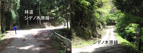 20090510ride_76