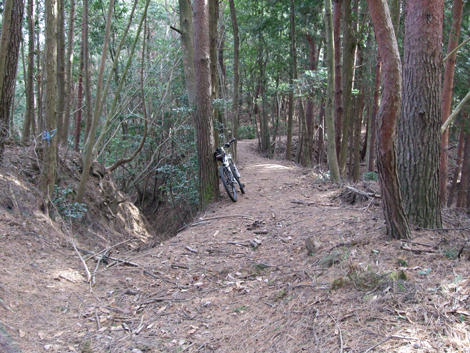20100103ride_76