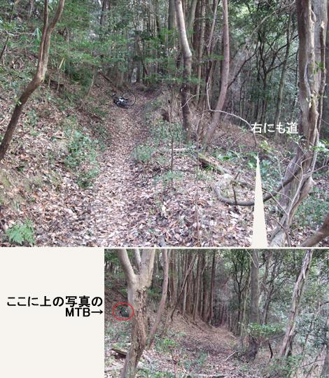20100110ride_26