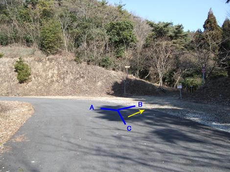 20100117ride_43