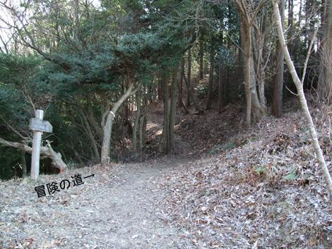20100117ride_46