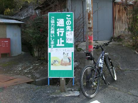 20100124ride_15