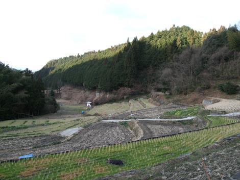 20100124ride_20
