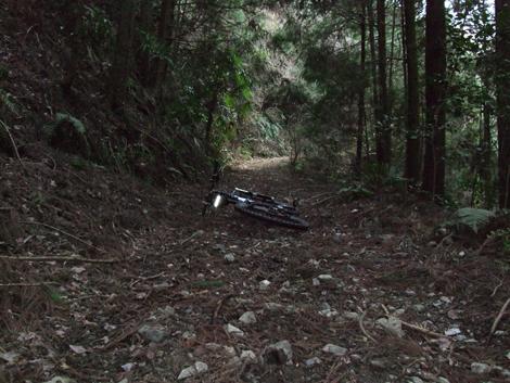 20100124ride_45