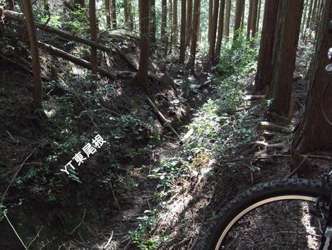 20100124ride_78