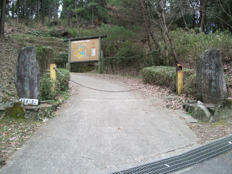 20100206ride_15