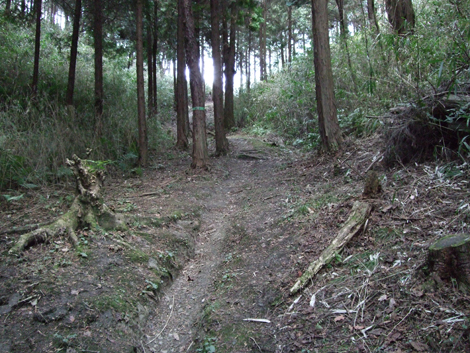 20100206ride_26