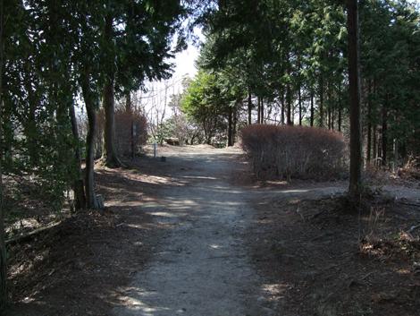 20100206ride_34