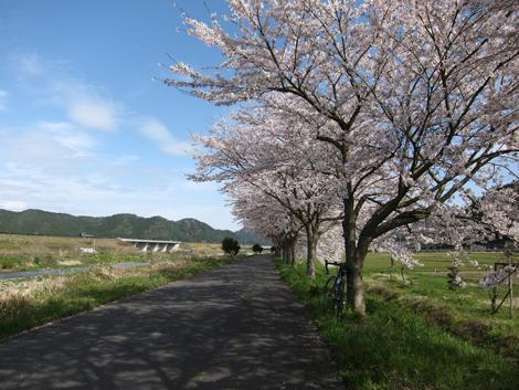 20100410ride_44