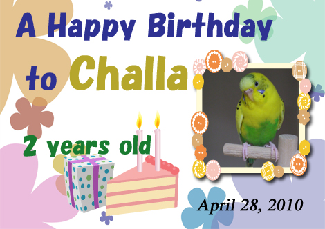20100428_challa_birthday