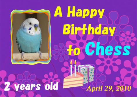 20100429_chess_birthday