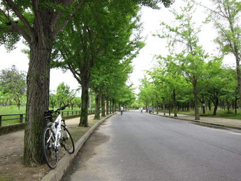 20100619ride_17