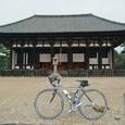 奈良・興福寺