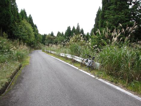 20101011ride_287