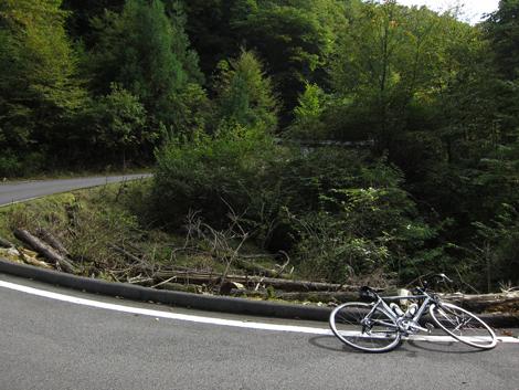 20101011ride_345