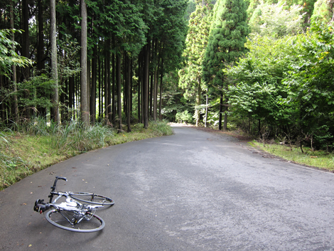 20101011ride_354