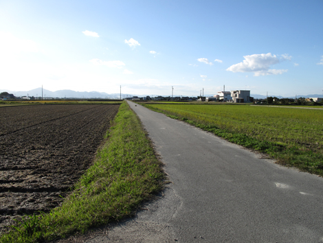 20101103ride_370