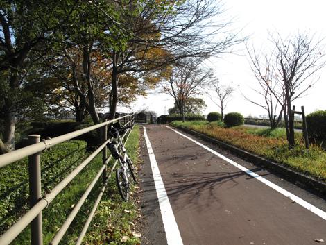 20101121ride_274