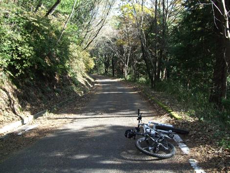 20101205ride_134