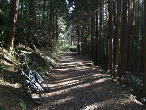 20101205ride_34