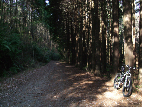 20101205ride_39