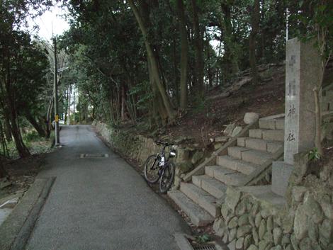 20110104ride_5