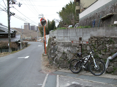 20110115ride_1