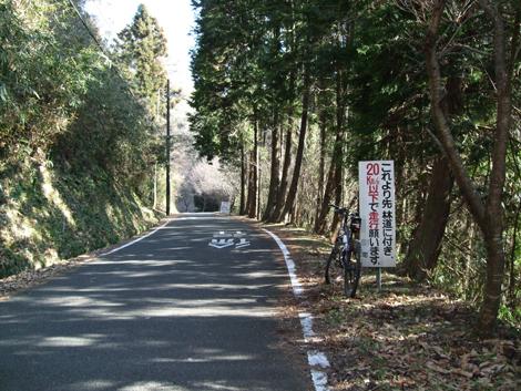 20100117ride_19