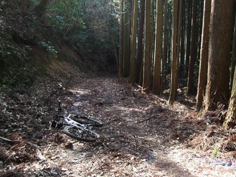 20110206ride_91