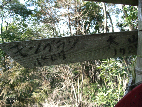 20110216ride_158