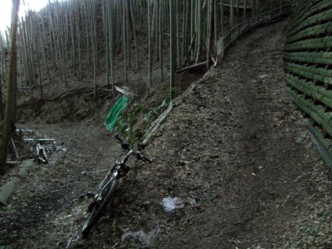 20110216ride_196