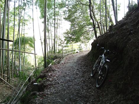 20110216ride_197