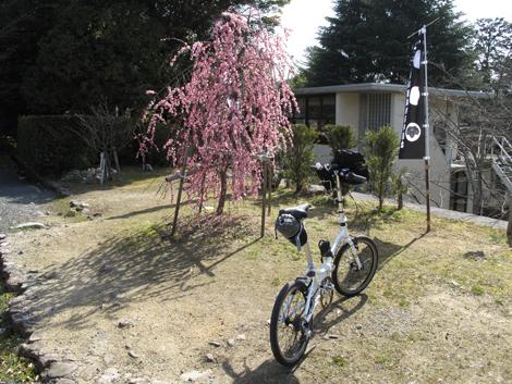 20110319ride_110