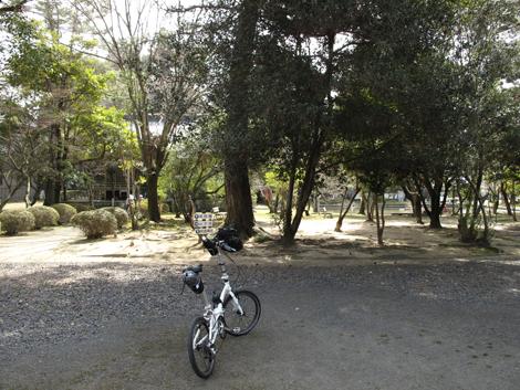 20110319ride_256