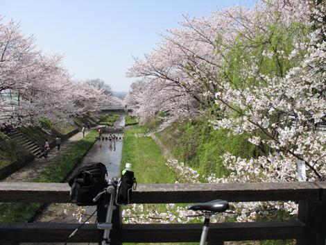 20110410ride_41