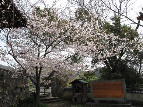 20110409ride8_40