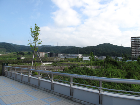 20120722hike_5