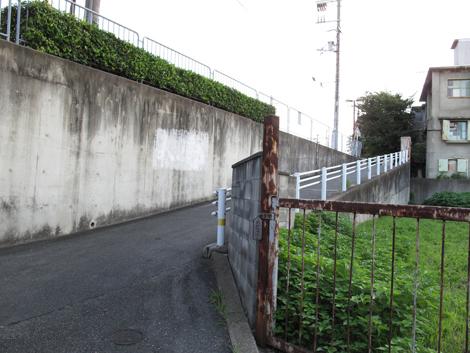 20120804hike_5