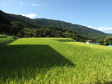 20120912hike_304