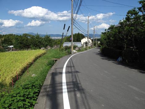 20120912hike_306