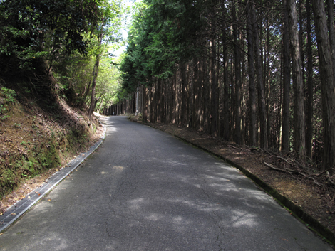 20120912hike_36