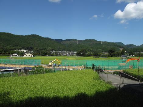 20120912hike_9