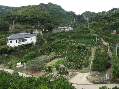 20121014hike_363
