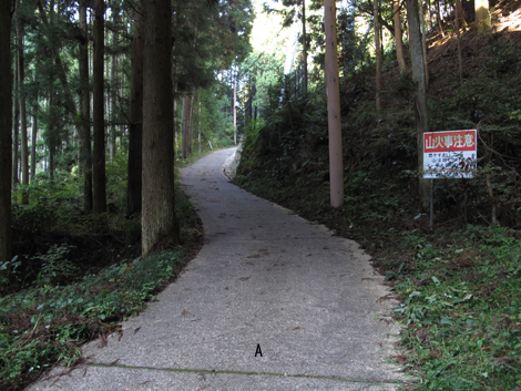 20121027hike_35